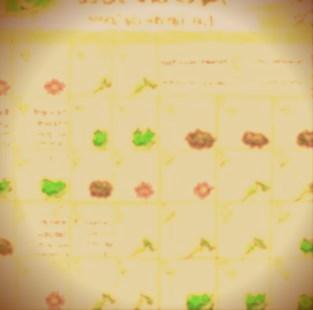 le-calendrier-lunaire-et-vos-plantes.jpg